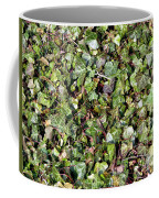 Ivy Ivy Ivy Coffee Mug