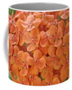 Ixora Moriwaki Coffee Mug