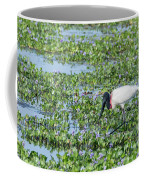 Jabiru Coffee Mug