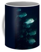 Jack Flush Coffee Mug