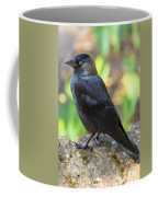 Jackdaw 1 Coffee Mug