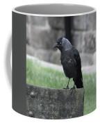 Jackdaw - Stare Coffee Mug