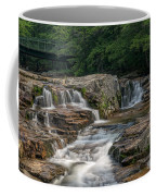 Jackson Falls Coffee Mug by Cindy Lark Hartman