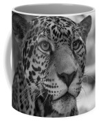 Jaguar In Black And White Coffee Mug