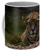 Jaguar In The Water Coffee Mug