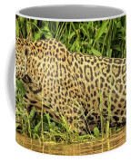Jaguar Prowls The River's Edge Coffee Mug
