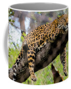 Jaguar Relaxation Coffee Mug