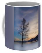 January 6  2010 Coffee Mug