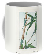 Japan: Bamboo, C1870s Coffee Mug