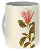 Japanese Bigleaf Magnolia Coffee Mug