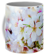 Japanese Cherry Tree Blossoms 2 Coffee Mug