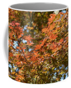 Japanese Maple Beauty Coffee Mug