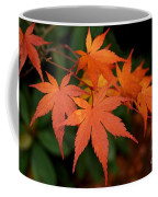 Japanese Maple Leaves Coffee Mug by Patricia Strand