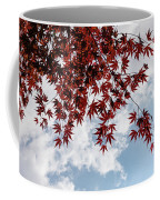 Japanese Maple Red Lace - Horizontal View Downwards Right Coffee Mug