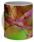Japanese Maple Seedlings Coffee Mug