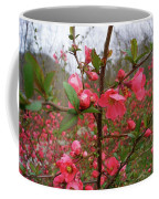 Japanese Quince Coffee Mug