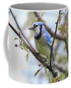 Jay In June Coffee Mug