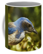 Jay Portrait I Coffee Mug