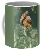 Jelly Belly Coffee Mug