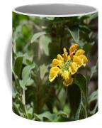 Jerusalem Sage Coffee Mug