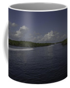 Jet Through The Mangroves Coffee Mug