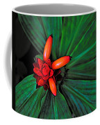 Joyful Spiral Coffee Mug