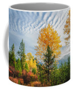 Jughandle Mountain Coffee Mug