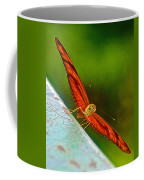 Julia Heliconian Butterfly Spreading Its Wings In Iguazu Falls National Park-brazil  Coffee Mug