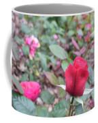 June Rose #4 Coffee Mug