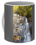 Juney Whank Falls In Nc Coffee Mug