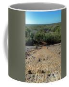 Jungle And Ruins View Coffee Mug