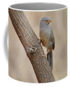 Jungle Babbler Coffee Mug