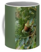 Just A Nut Coffee Mug