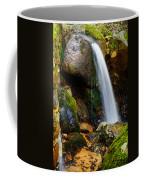 Just A Very Small Waterfall II Coffee Mug