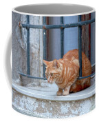 Just Curious Cat Coffee Mug