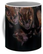 Just Hanging Around - Bats Coffee Mug