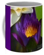 Just Opening Purple Waterlily -  Square Coffee Mug