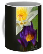 Just Opening Purple Waterlily With White - Vertical Coffee Mug