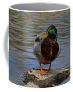 Just Standing On A Rock Coffee Mug
