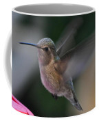 Juvenile Anna's Hummingbird Landing On Perch Coffee Mug