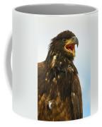 Juvenile Bald Eagle Coffee Mug