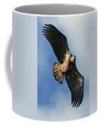 Juvenile Bald Eagle Two Coffee Mug