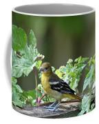 Juvenile Baltimore Oriole Coffee Mug