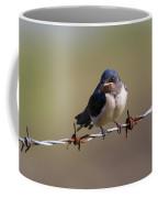 Juvenile Barn Swallow Landscape Coffee Mug