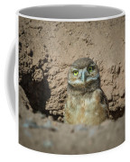 Juvenile Burrowing Owl-img_164817 Coffee Mug