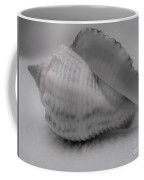 Juvenile Conch  Coffee Mug