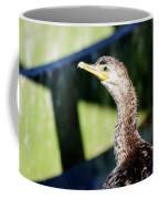 Juvenile Cormorant Profile Coffee Mug