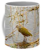 Juvenile Ibus Coffee Mug