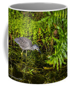Juvenile Night Heron Coffee Mug