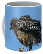 Juvenile Red-shouldered Hawk Coffee Mug